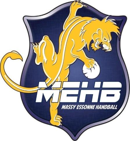 Logo Hand Massy
