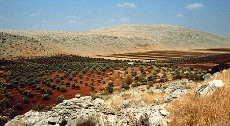 paysage syrie