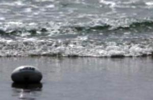 Ballon à la mer... Lien ntre les îles