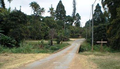 wikipedia - Canala - Nouvelle Calédonie