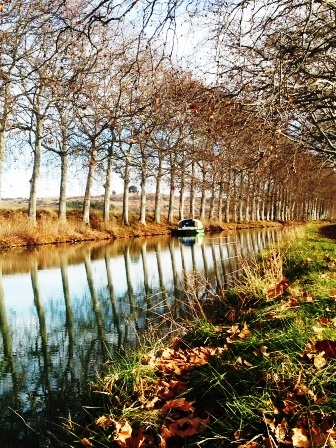 … Et le Canal du Midi, qui borde la commune