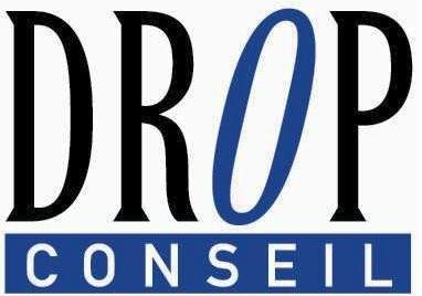 logo drop conseil