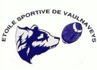 logo vaulanveys